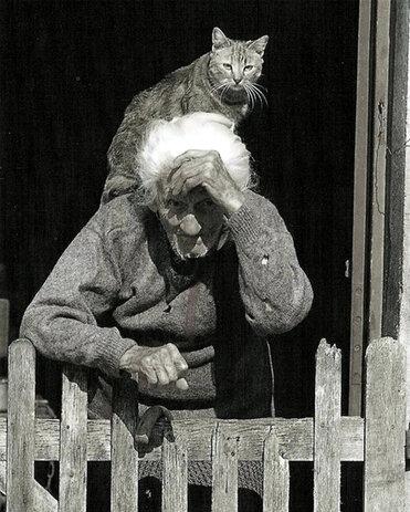 03 - Des chats et des hommes