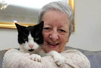 Un chat permet à sa ma^tresse de découvrir son cancer