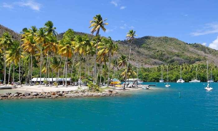 Balade Aux Caraïbes.