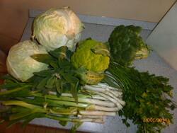 Récoltes et réserves de saison