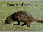 Parc animalier de Beauval (41)