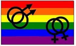 Le mariage homosexuel: en France et à l'international