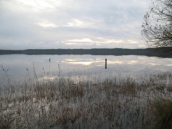 lac de LEON (Landes)4