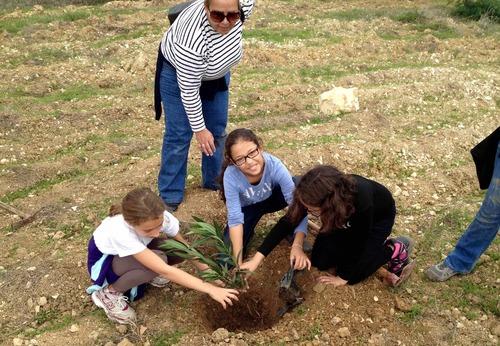 Fête de l'arbre à Menzah 6, une bien belle matinée