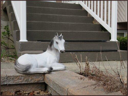 Petit cheval à l'accueil....