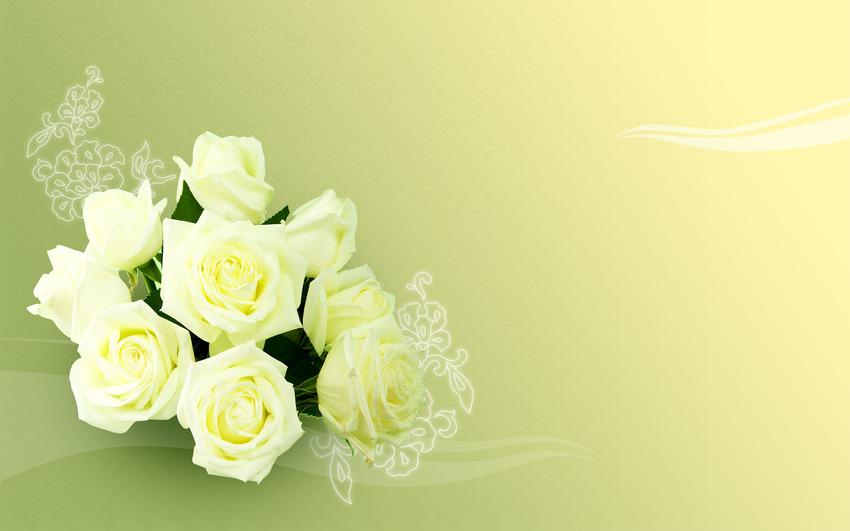 10 Images de Roses
