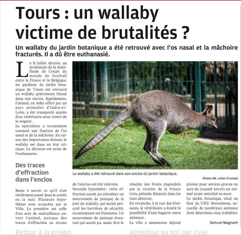 Qu Est Il Arrive Au Wallaby Jardin Botanique Tours Mamieninette37