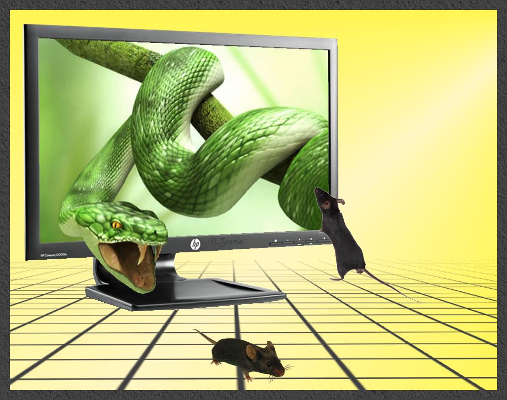 3D hatású képeim