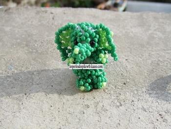 P Eléphant Vert