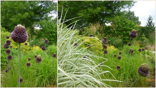 Visite aux jardins Aemona