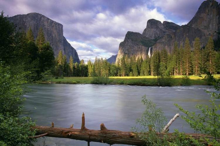 La beauté est partout dans la nature (24 Photos)