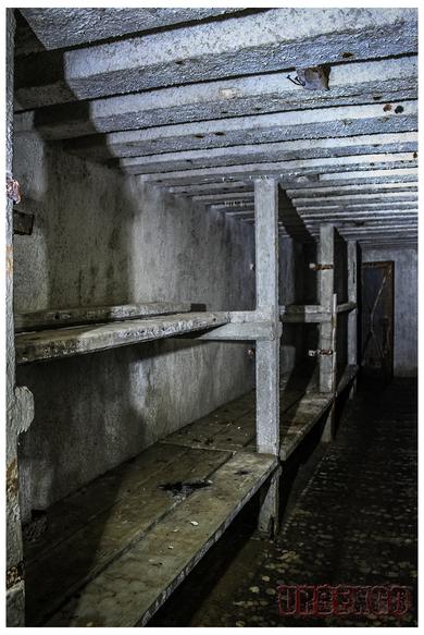 Le bunker des marmottes
