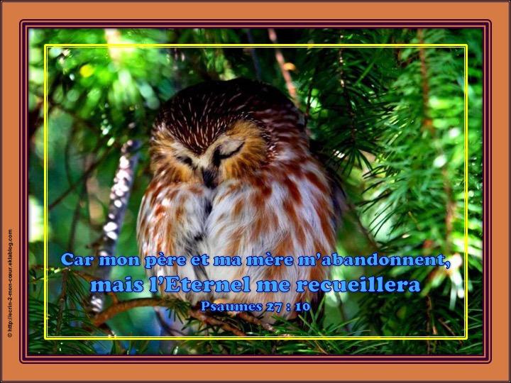 L'Eternel me recueillera - Psaumes 27 : 10