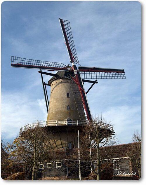 Le moulin de Damme