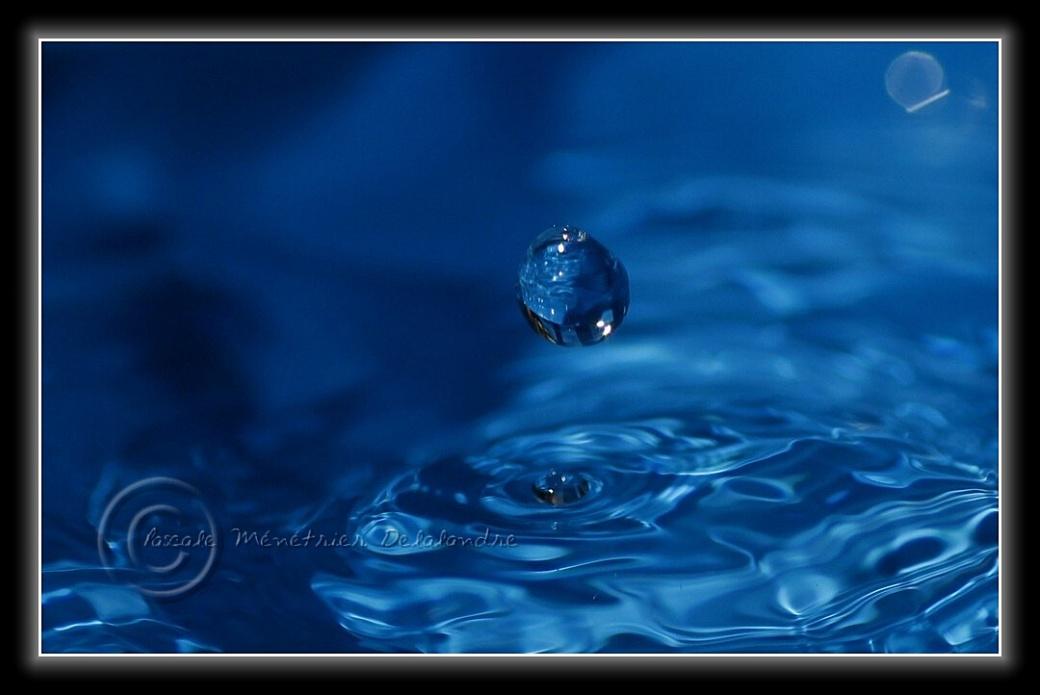 Bleu d'Ô...