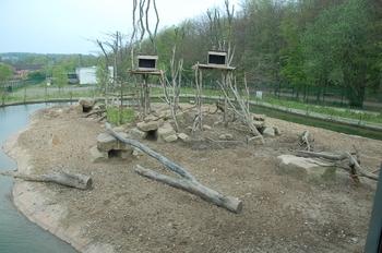 Zoo Osnabruck d50 2012 046