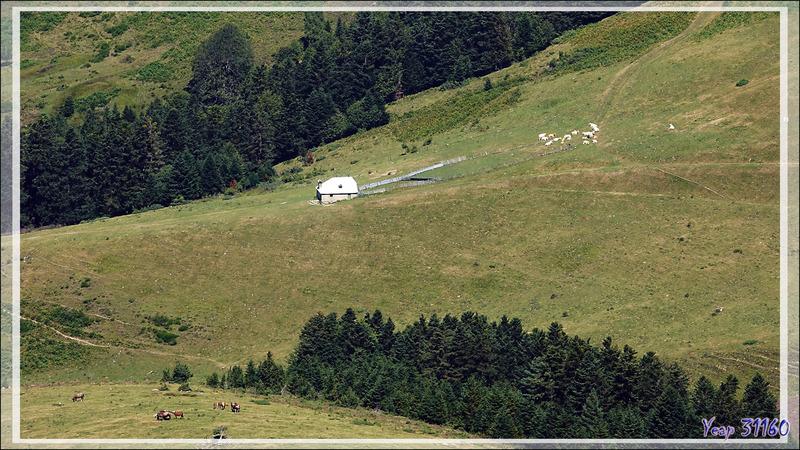 Randonnée dans le luchonnais : les hauts d'Artigue - 31