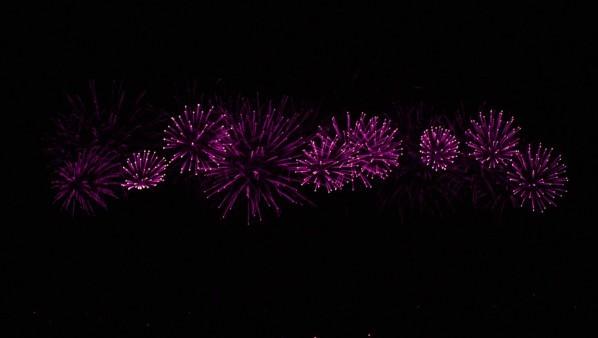 Palmiers de lumière 11915