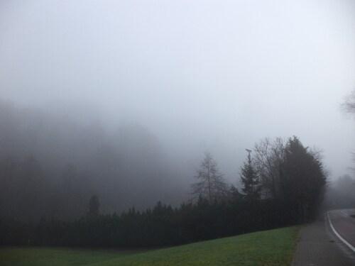 Hier, balade dans la brume