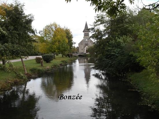 BONZEE REDUITE.jpg 2