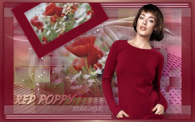 32. Red Poppy
