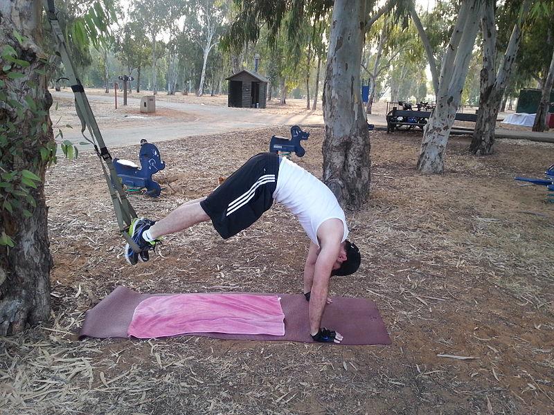 3-Gymnastique Des Organes 'Système TRX' entraînement plein-air
