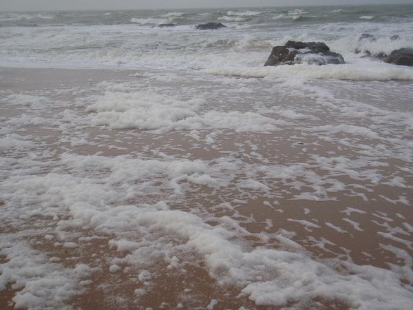 L'écume de mer