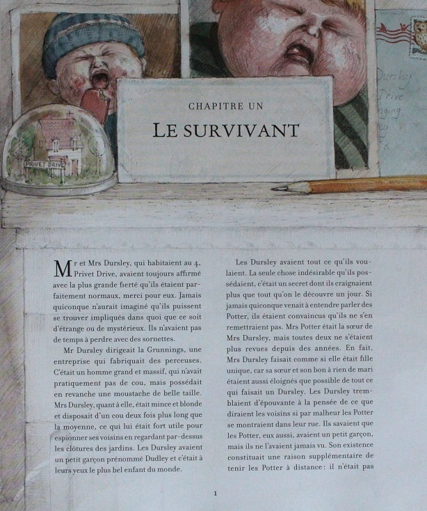 Harry Potter A L Ecole Des Sorciers Version Illustree Beaux