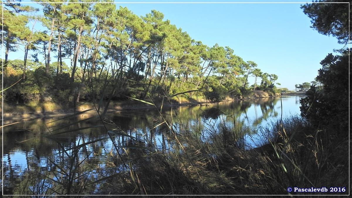 Les Réservoirs de Piraillan - Octobre 2016 - 4/10