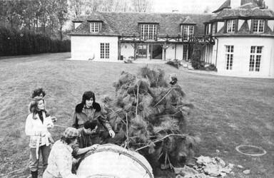 Décembre 1975 : le premier sapin de Ludovic, 5 mètres de haut....