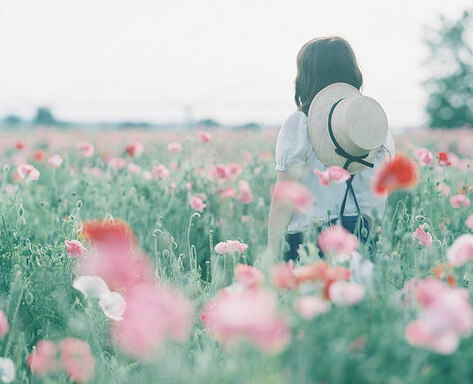 [Zodiac] Fleurs