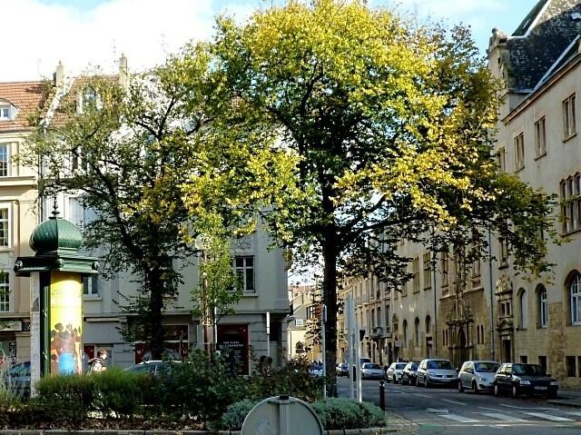 Rue de Salis Metz 4 Marc de Metz 12 10 2012