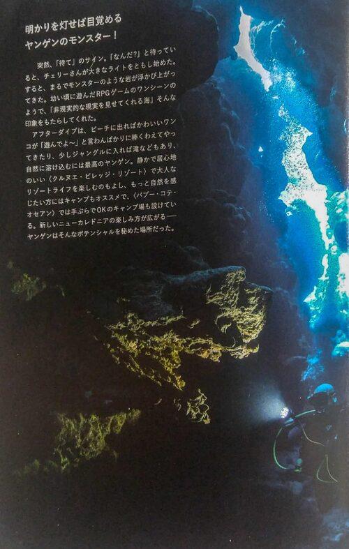 La grotte des monstres pétrifiés - Hienghène