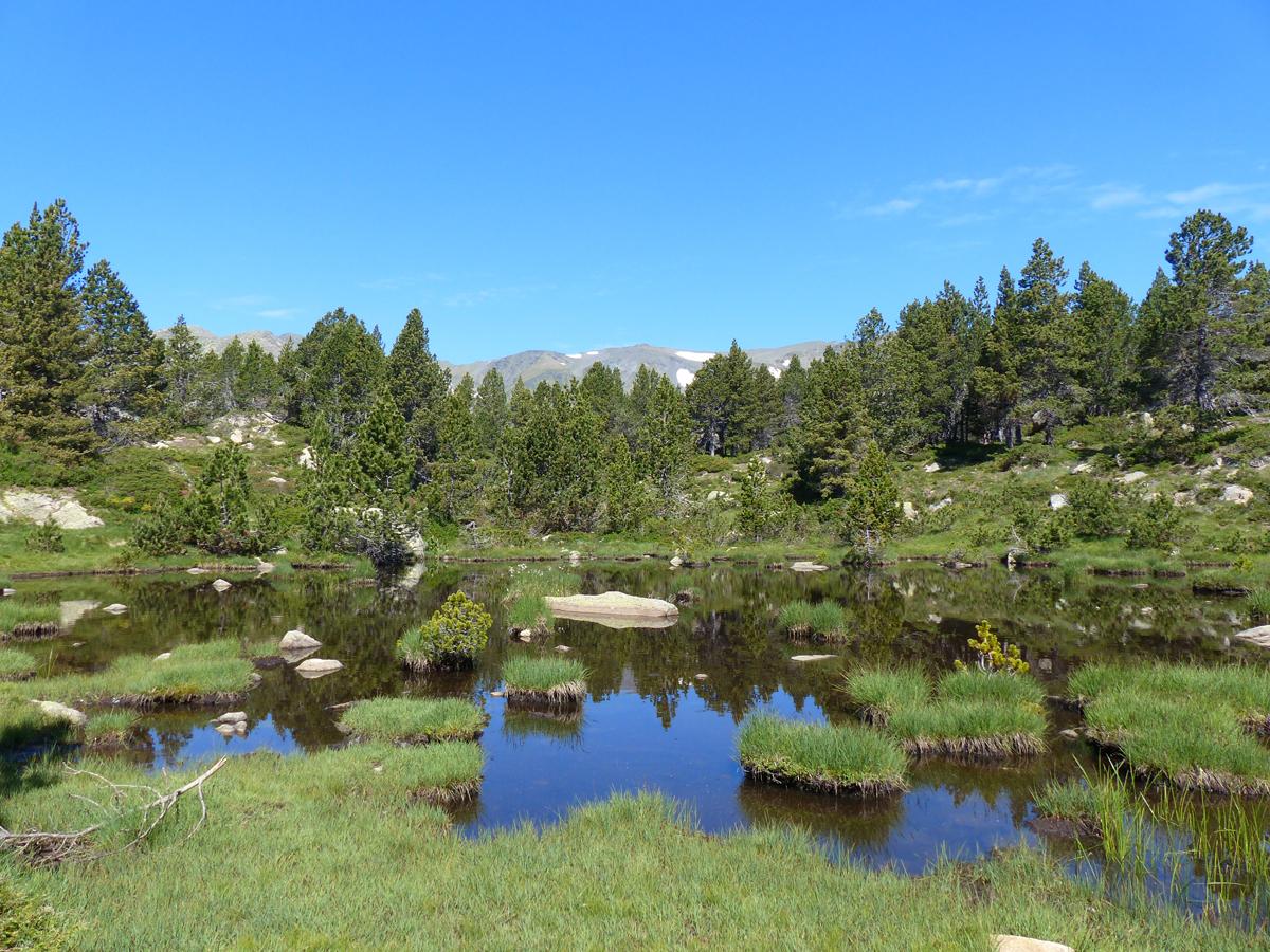 Les lacs du Carlit dans le Capcir.......................(P.O)