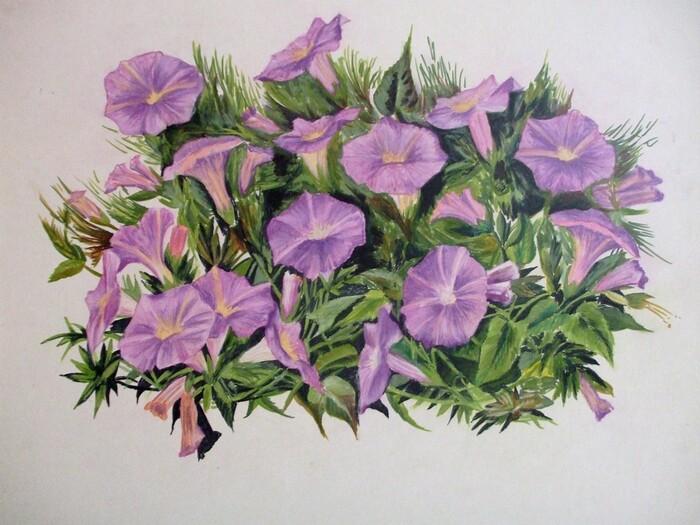 Bouquet de pétunias