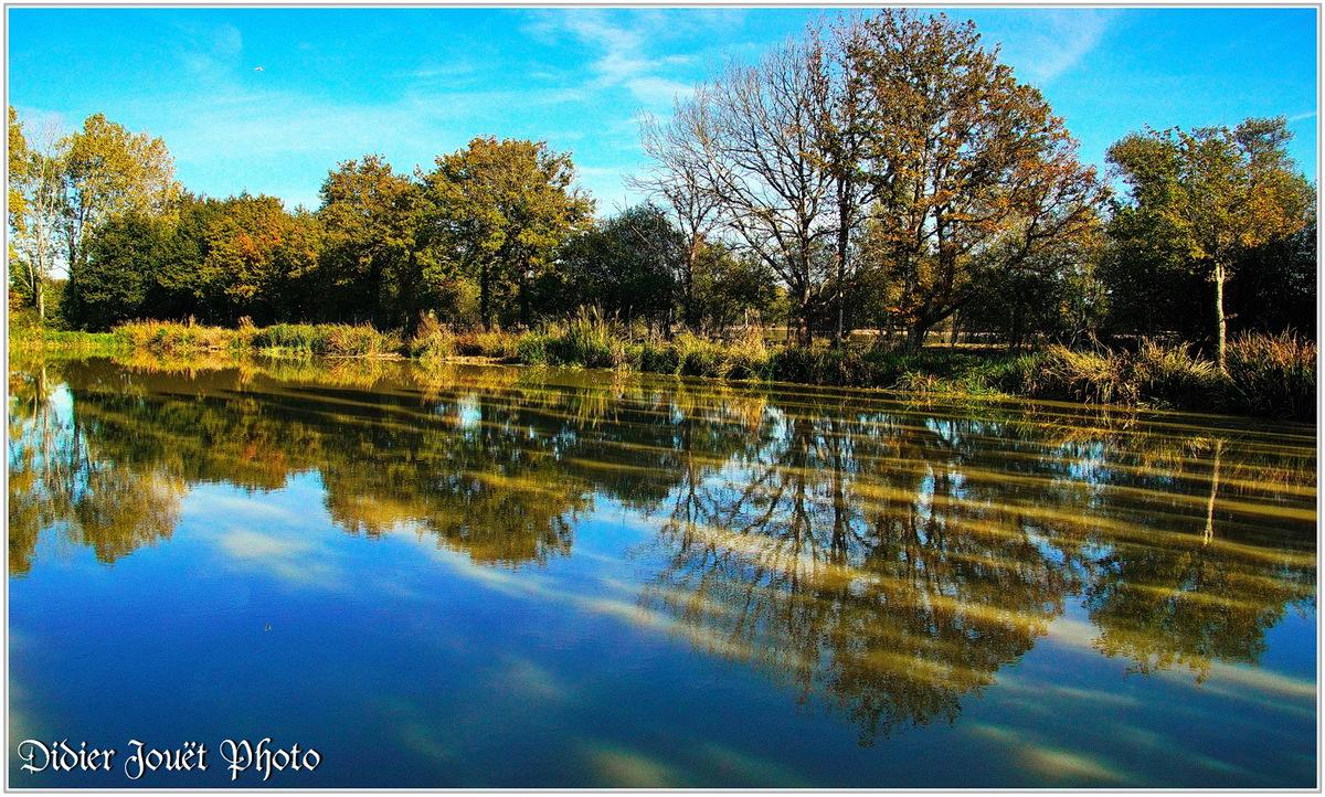 85 . Vendée - La Chaize le Vicomte (24) - Etang communal