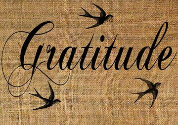 11. UN SIMPLE ACTE DE GENTILLESSE - la gratitude, source de bonté naturelle