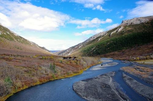Jour 13 - Denali National Park