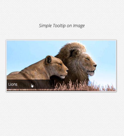 Tooltip simple sur l'image