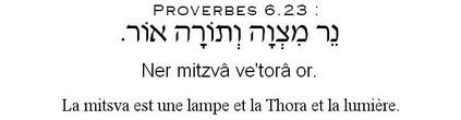 mitsva commandement torah loi dieu