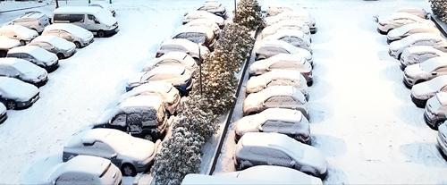 Neige, neige en Alsace 1