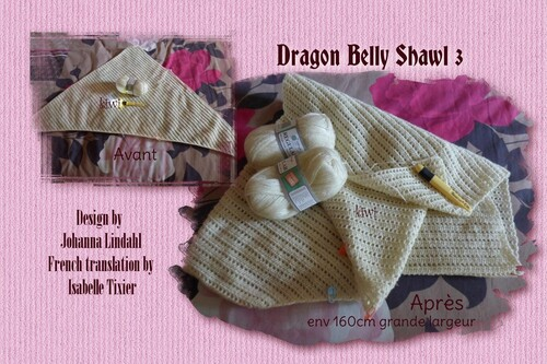 Cal Dragon Belly Shawl 3