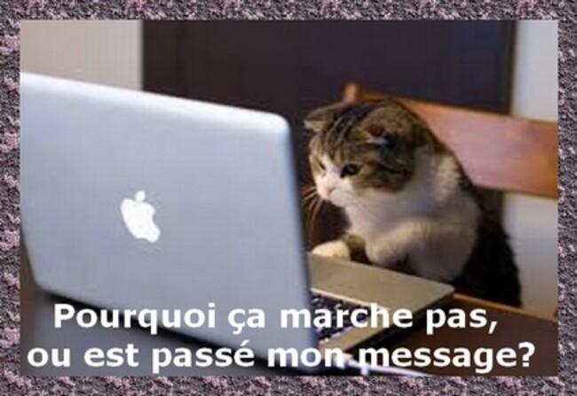 -L'ORDINATEUR A CHANGER LA VIE.....ET L'HUMOUR DU JOUR.....