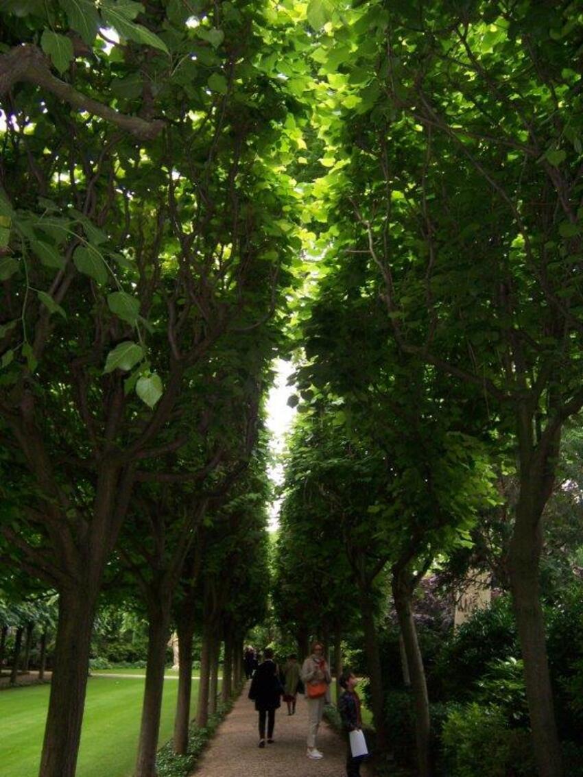 Parc de l'hôtel Matignon