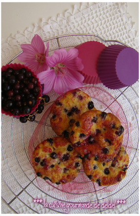 MUFFIN CASSIS