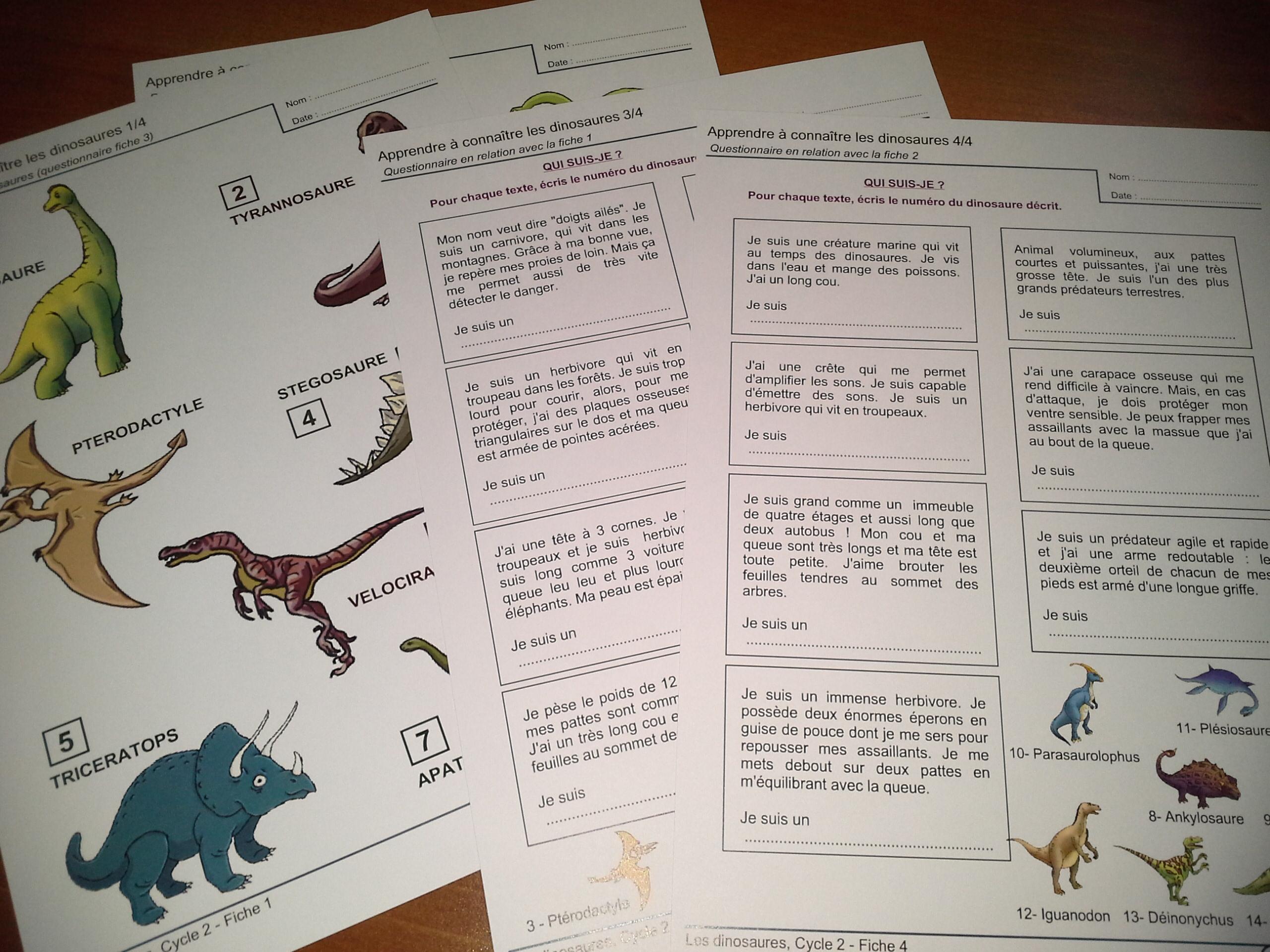 les dinosaures   activit u00e9s pour le cycle 2