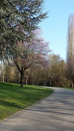 balade du dimanche au parc du morbras