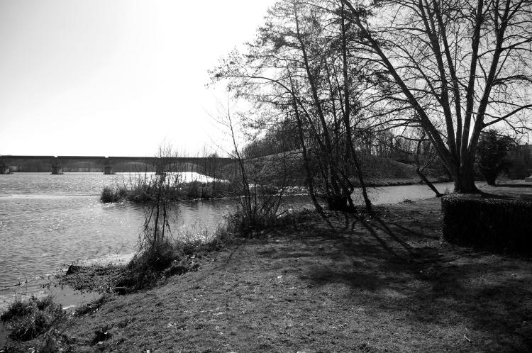 Roanne, confluence du Renaison et de la Loire, mars 2013   #2