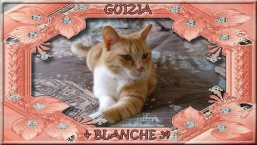 GUIZIA