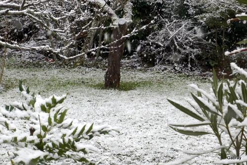 Il neige ce matin